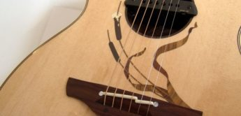 Test: Takamine LTD 2005, Westerngitarre