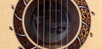 Test: Takamine Limited 2006, Westerngitarre