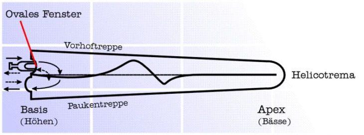 workshop recording gehör lautstärke frequenzen