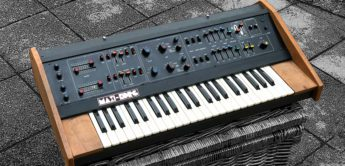 Blue Box: Maxi-Korg 800DV, Analogsynthesizer