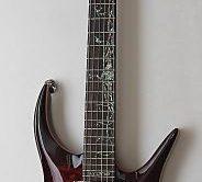 Test: Zerberus, Hydra II, E-Gitarre