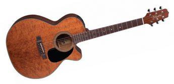 Test: Takamine EF440SC GN Westerngitarre