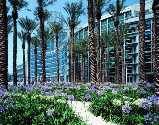 -- Convention Center unter Palmen - Anaheim --