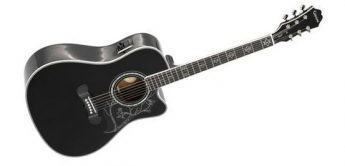 Test: Epiphone Dave Navarro Signature Jane, Westerngitarre