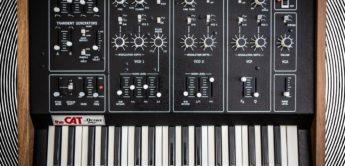 Blue Box: Octave Cat SRM, Analog-Synthesizer