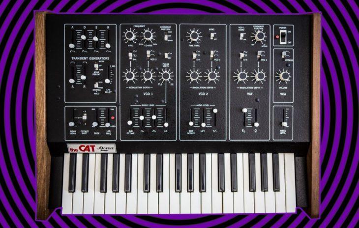 Octave Cat Synthesizer von 1976