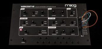 Top News: Moog Werkstatt-Ø1, Analog Synthesizer Kit