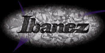 IBZ_Logo