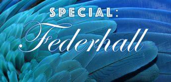 Federhall: Geschichte und Entwicklung der Hallspirale