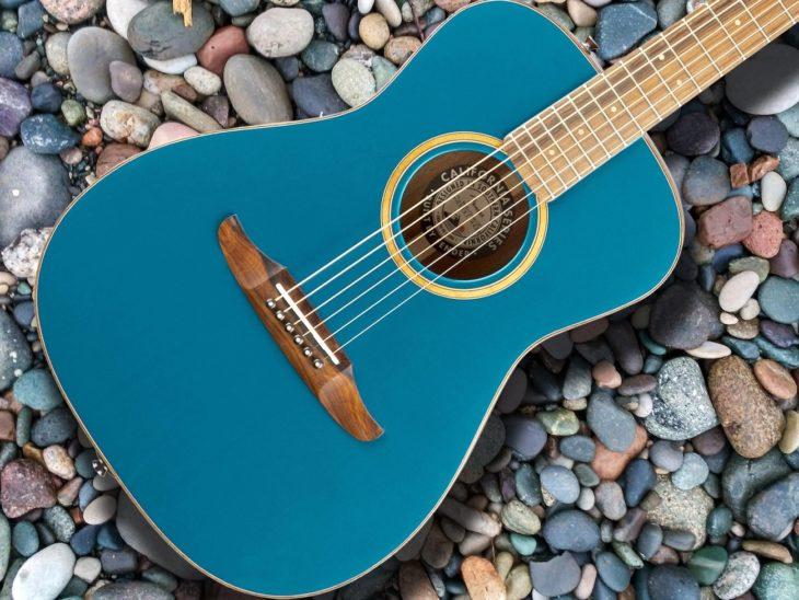 Fender Malibu Classic title