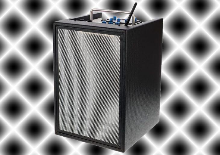 Elite Acoustics D6-8 Akustikgitarrenverstärker