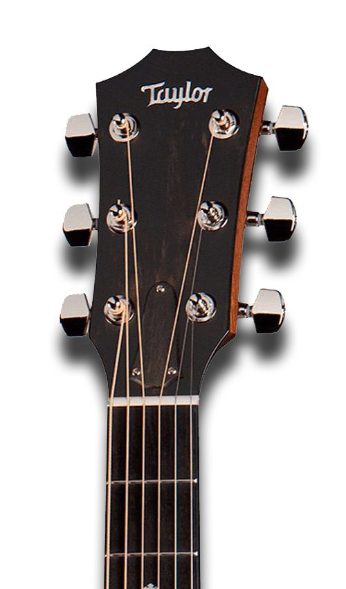 Taylor 314Ce Headstock