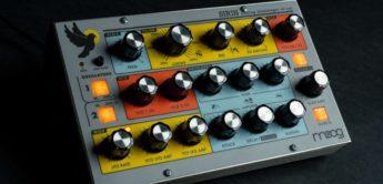 Neu: Moog Sirin mit buntem Analogsound