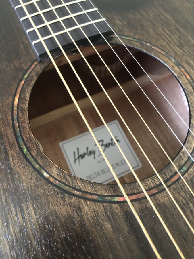Harley Benton Delta Blues MJCE_Rosette