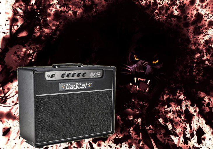 Bad Cat Cub 15R