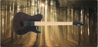 Test: FGN J-Standard Iliad 664 BK, E-Gitarre