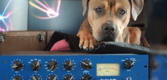 Tegeler Audio: Versteigerung für guten Zweck!