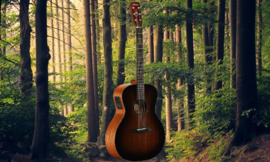 Test: Alvarez MGA66 ESHB, Akustikgitarre