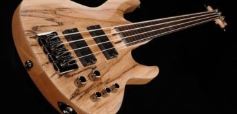 Test: ESP LTD B204SM FL Natural Satin, Fretless E-Bass