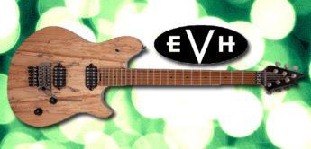 Test: EVH Wolfgang WG Std Exotic Spalted, E-Gitarre
