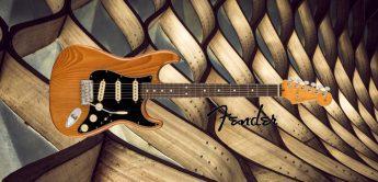 E-Gitarre Test – Fender AM Pro II Stratocaster RST PIN