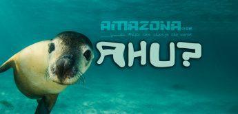 AMAZONA.de: Deine Vorteile durch AHU-Punkte
