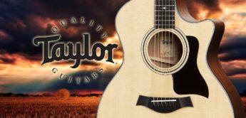 Test: Taylor 314Ce V-Class, Akustikgitarre