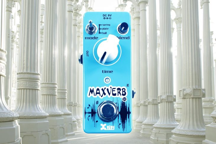 XVive Maxverb title