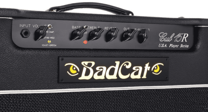 Bad Cat Cub 15R Panel