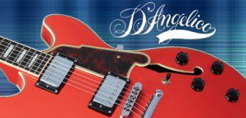 Test: D'Angelico Premier DC, E-Gitarre