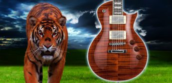 Test: ESP LTD EC-1000 Fluence Tiger Eye E-Gitarre