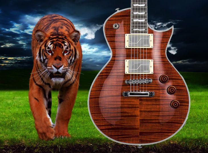 ESP LTD EC-1000 Fluence Tiger Eye E-Gitarre