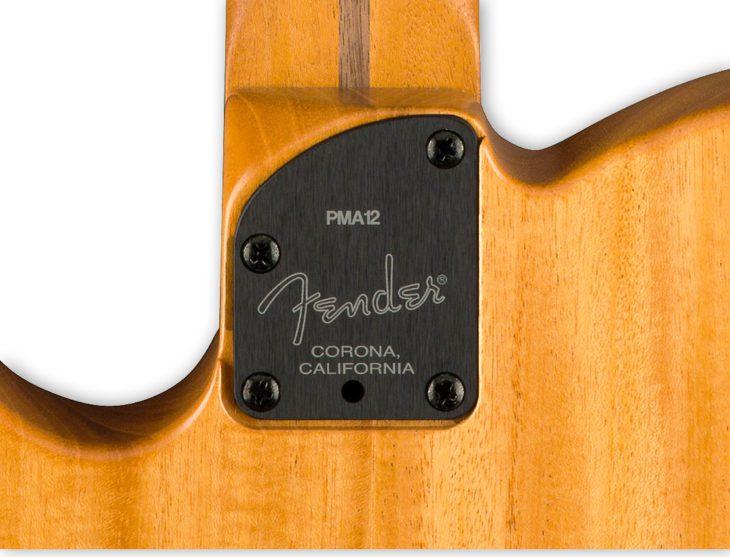 Fender Acoustasonic Tele Neckplate