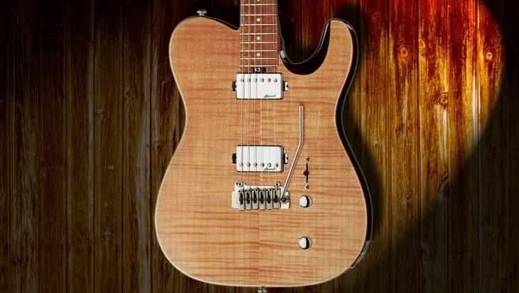 Harley Benton Fusion-T HH E-Gitarre