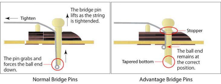 Ibanez AW80CE-BLG Akustikgitarre Advantage Bridge Pins
