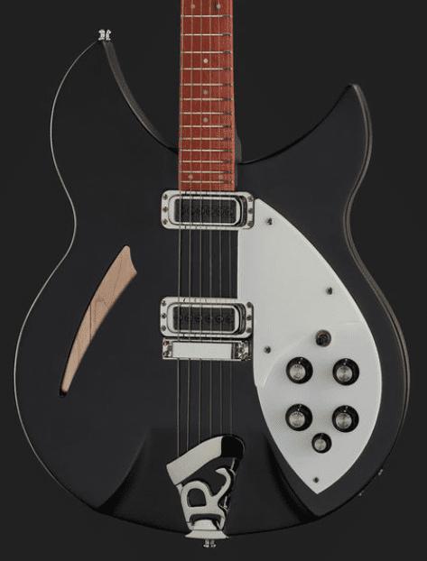 Rickenbacker 330 Body 2