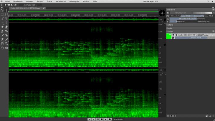 SpectralLayers Pro 6 - Darstellung in der Frequenzdomäne
