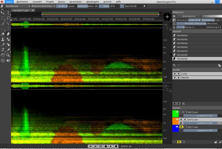 SpectralLayers Pro 6 - Lautmalerei Layer