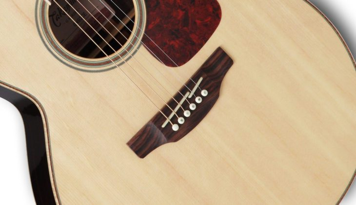Takamine GN93CE-NAT top