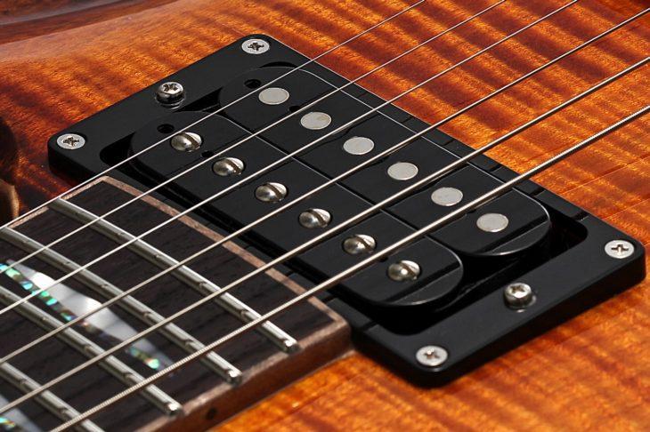 FGN Guitars Expert Flame E-Gitarre Pickup