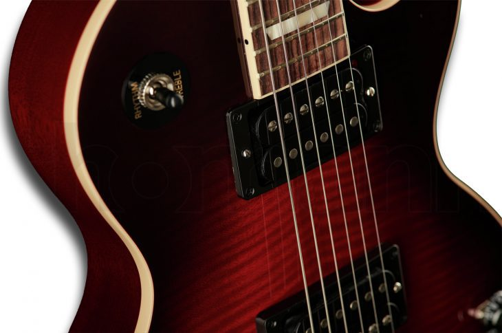 Gibson Les Paul Slash Standard Pickups