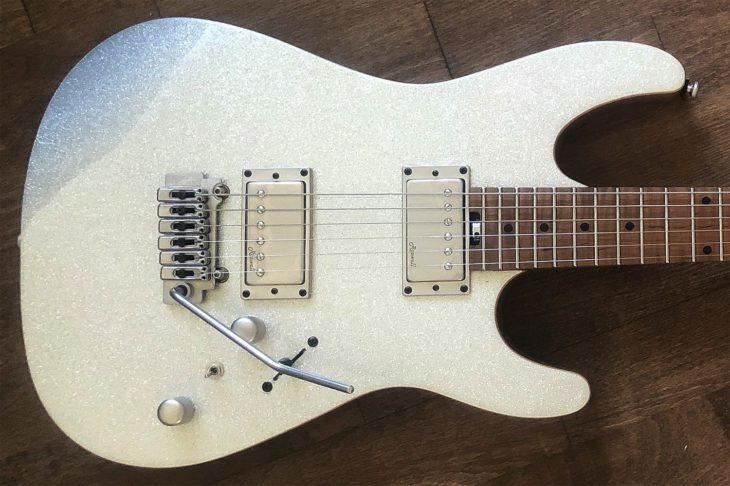 Harley Benton Fusion-II HH Roasted SSP E-Gitarre