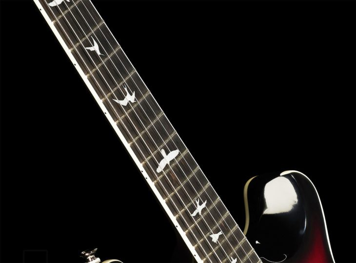PRS SE Hollowbody FR Bird Inlays