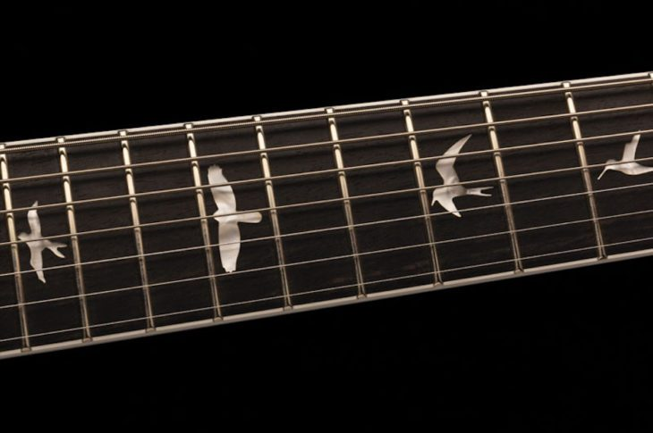 PRS SE Mark Holcomb Bird-Inlays