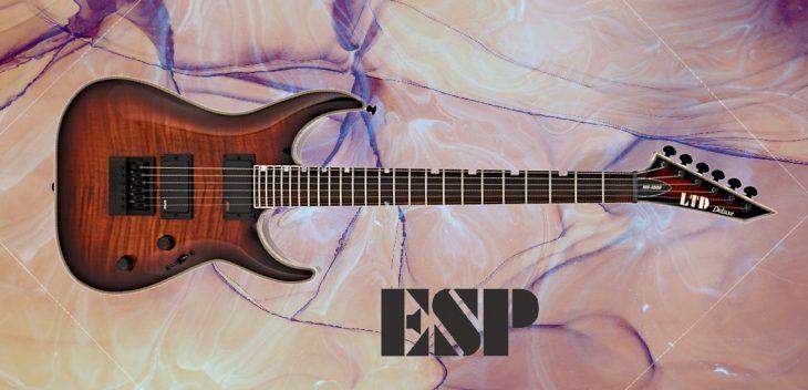 Test: ESP LTD Deluxe MH-1000, E-Gitarre
