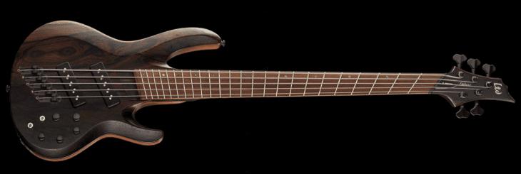 Fanned Frets LTD Bass