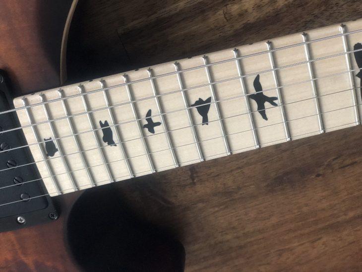 PRS Dustie Waring Bird Inlays Fretboard
