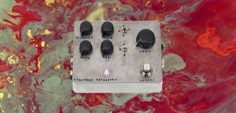 Test: Fairfield Circuitry Meet Maude, analoges Delay-Pedal