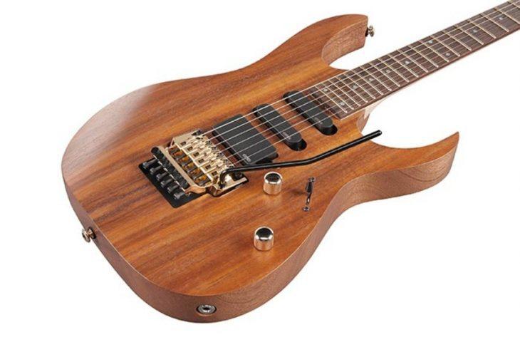 Test: Ibanez RG6PKAG, E-Gitarre