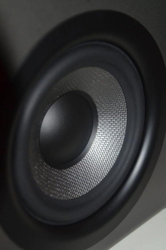 Denon Dj SM50 Basstreiber